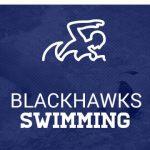 Brandon Boy's Swim- Individual Season Highlights