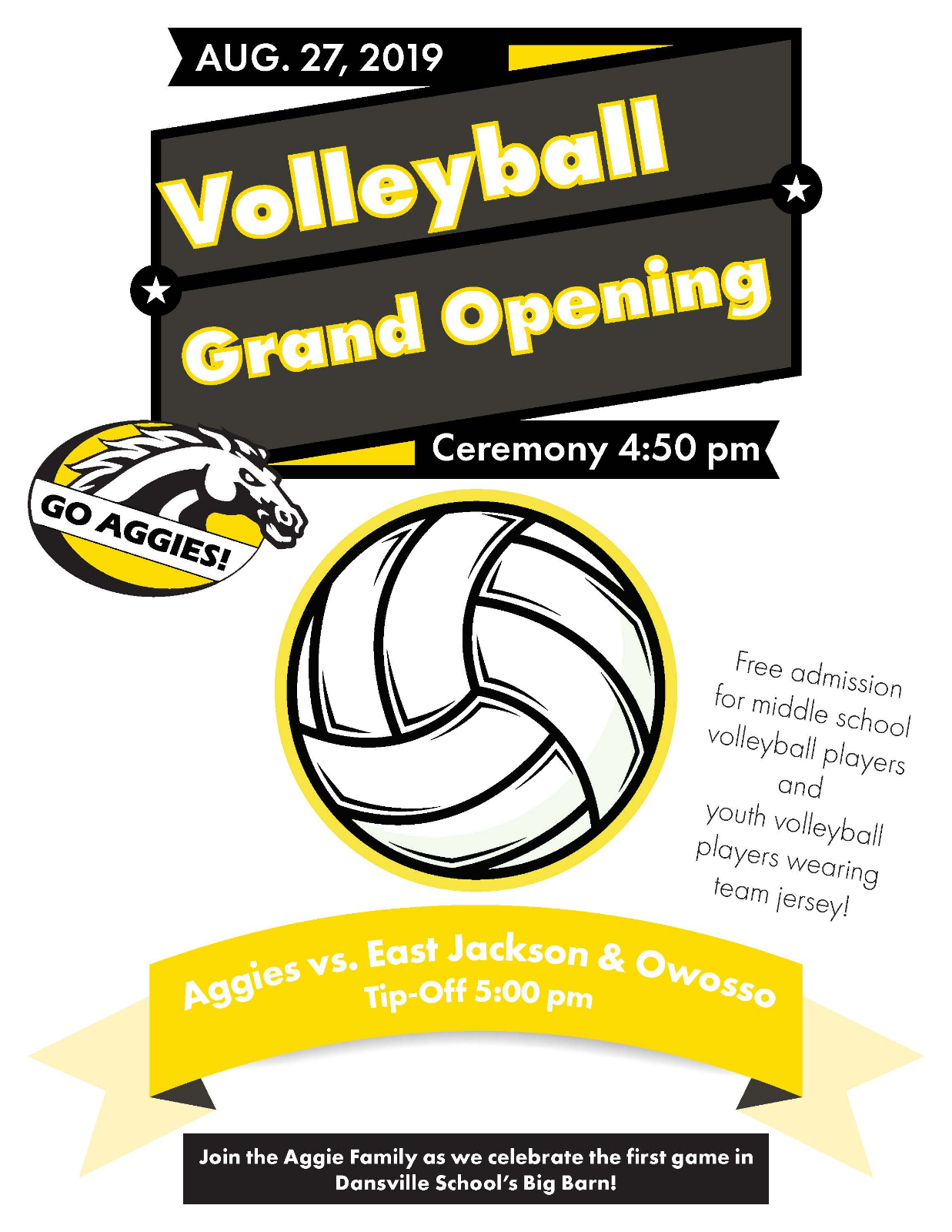 Volleyball Grand Opening Scheduled for August 27