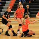 Mineral Ridge High School Girls Junior Varsity Volleyball falls to Western Reserve Local 0-2