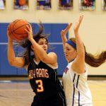 Mineral Ridge High School Girls Varsity Basketball beat Southington 41-29