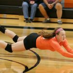 Mineral Ridge High School Girls Junior Varsity Volleyball falls to Springfield Local High School 2-1