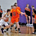 Boys Junior Varsity Basketball beats Western Reserve 65 – 59