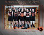 Girls 7th Grade Basketball beats Mcdonald 31 – 13