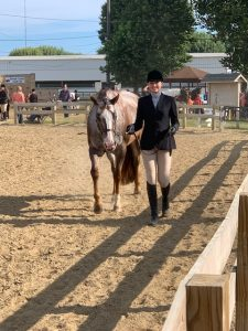 Niles Equestrian Team – currently in 2nd place