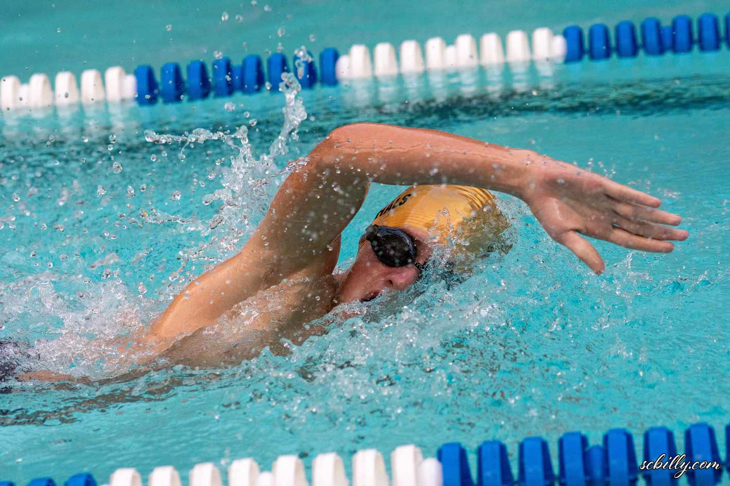 Swim Team Victorious at Greenwave Invitational