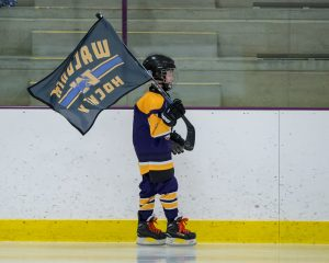 Boys Hockey vs. New Prague  1-6-18  Pictures by Tim Kruse