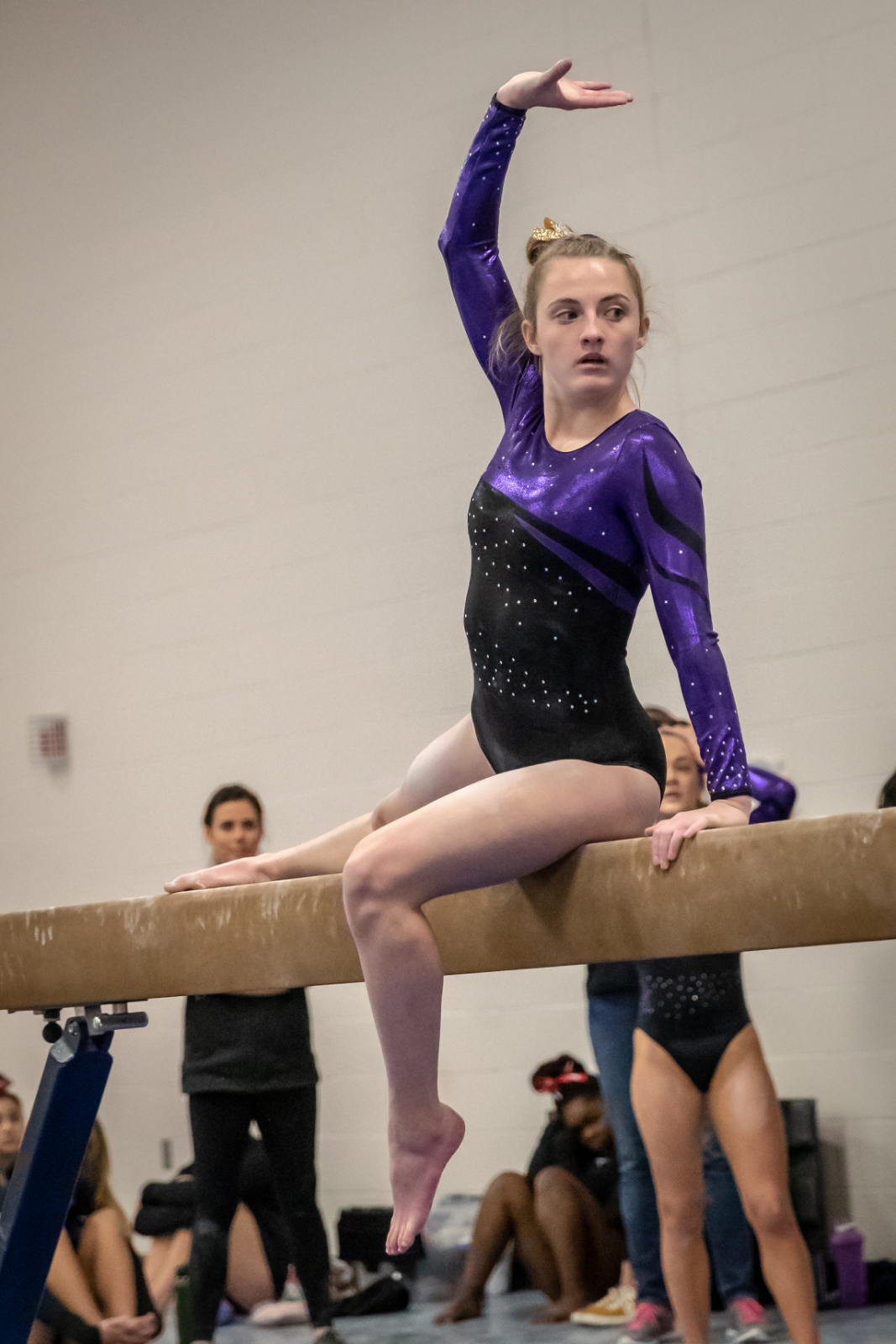 Wildcat Gymnasts Highlighted on Fox9