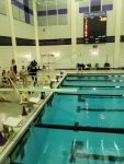 BHS Swim/Dive Highlight Of The Night, Abbey Herrle Dive (02/18/21) – BHS Athletics