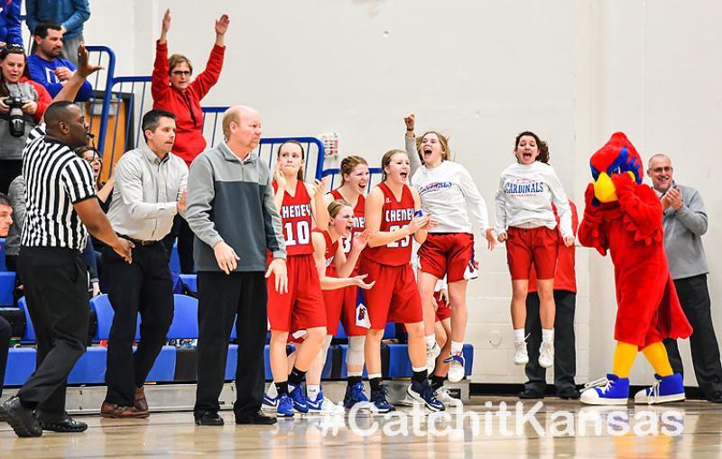 Lady Cardinals Basketball Post-Season Honors