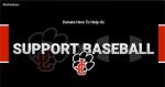 Support Baseball!
