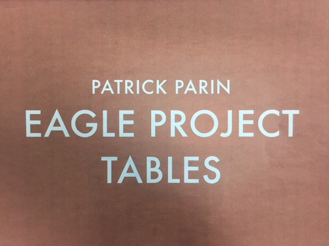Junior Patrick Parin Completes Eagle Scout Project