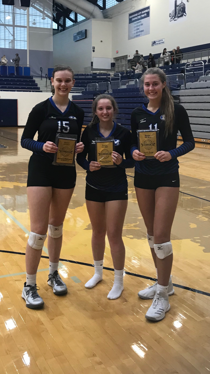District Volleyball All-Star Game