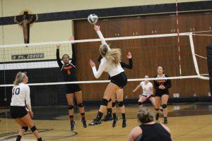 Volleyball – STA vs Massillon