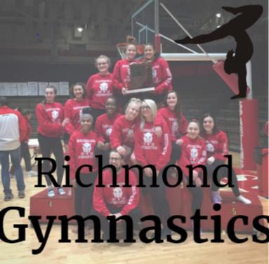 Gymnastics- November Information