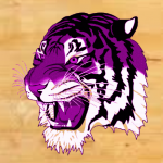 Girls 8th Grade Basketball Test beats Hagerstown 16 – 13