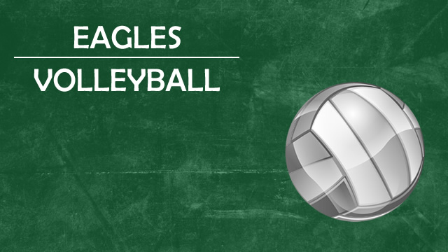 VOLLEYBALL – UPPERCLASSMEN TRYOUTS