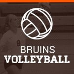 Volleyball defeats Brecksville