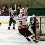 Hockey defeats Holy Name to become Sectional Champs