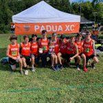 Boys Claim Runner-Up Honors, Girls 7th at McDonough
