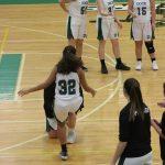 Girls Basketball vs New Hope 1/15/19