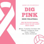 Girls Volleyball DIG PINK Game