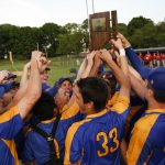 WORTH THE WAIT: Cougars win two-day sectional championship game – GDR Sports: Brian Heinemann