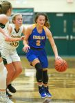 Hill, Herrell power Cougars to opening-night win – GDR Sports: Staff Reports (Adam Wire)