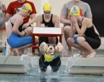GO TIME: Area teams vie for state berths at New Palestine Sectional – GDR Sports: Steve Heath