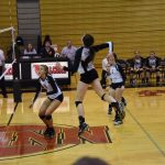Volleyball Beats Jimtown, Advances to Sectional Semi-Finals