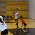Volleyball Takes Down South Central