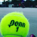 Ridge View Girls Tennis Heads to Regions