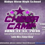 Cheer Camp Dates Announced
