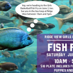 Girls Basketball Fish Fry – Saturday, June 2 from 10am-5pm