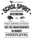 Vote for @RidgeViewSports in Monday's @SCHSL Twitter Challenge!