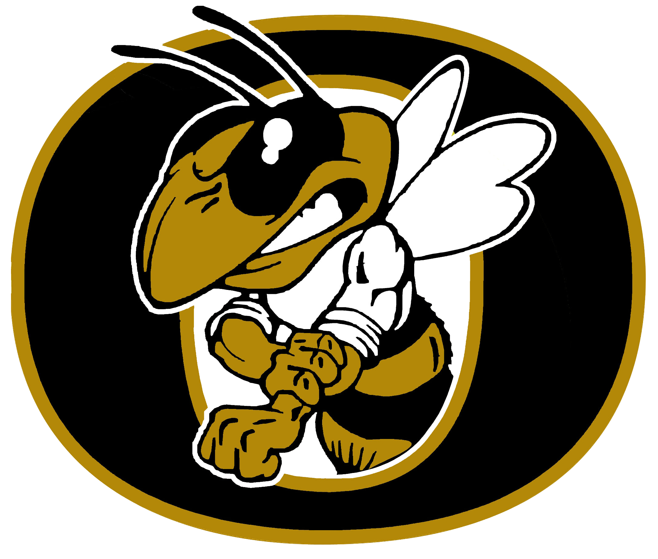 YELLOWJACKETS HOST AREA TOURNAMENT