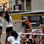 Volleyball vs Albertville