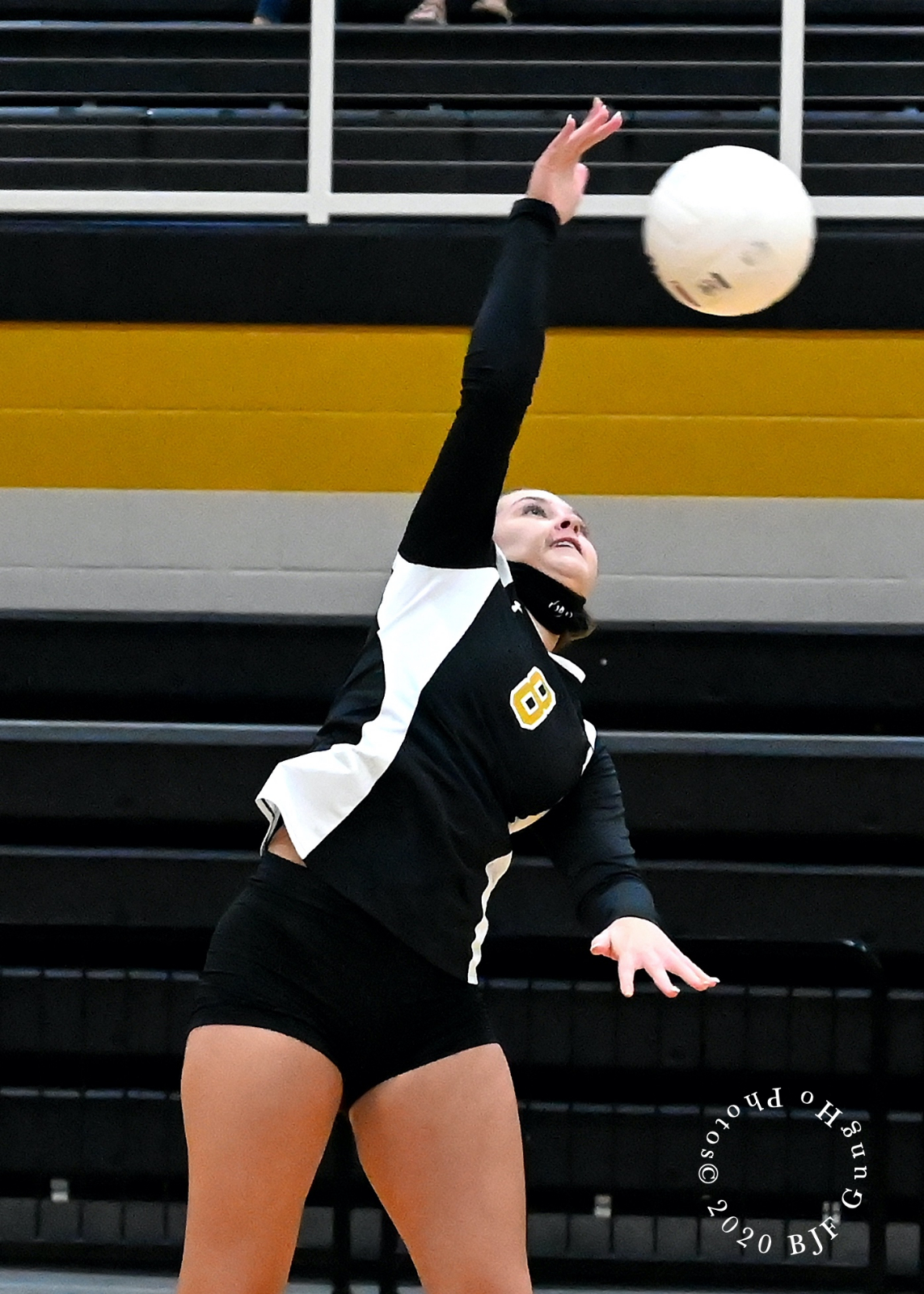 Area Volleyball