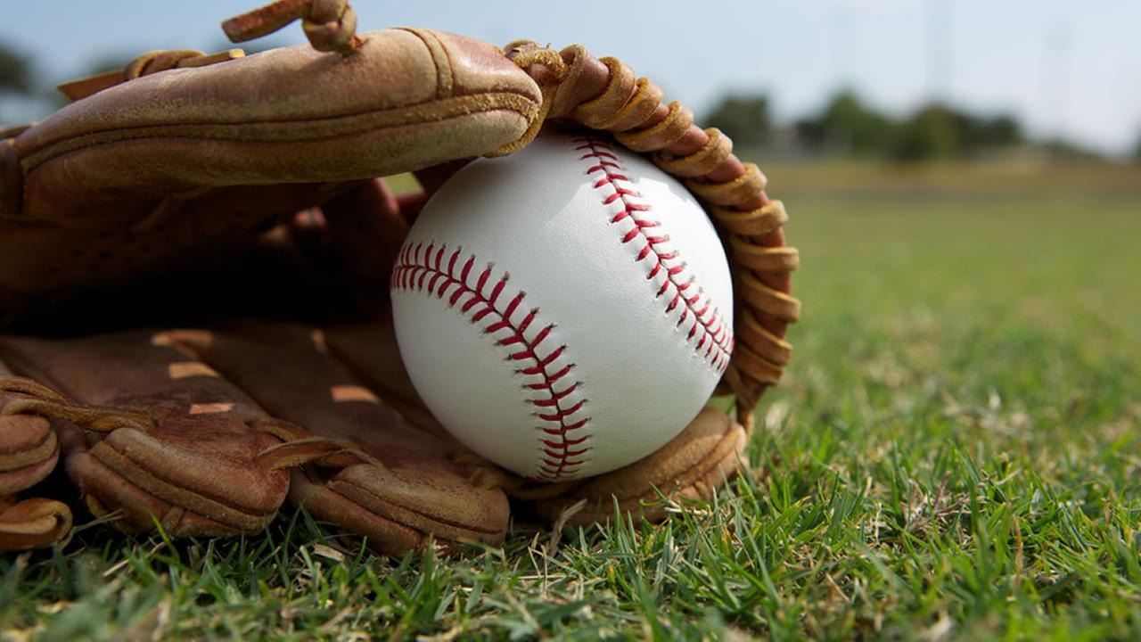 Baseball Meeting This Week!