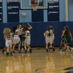 JV Hoops Upends Lake Catholic 44-29