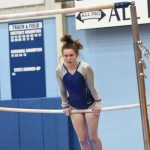 Gymnastics Finishes 9th In District; Kaley Miklich Advances To State Meet