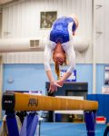 Gymnastics vs. Strongsville @ Magnificat