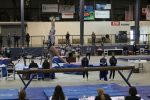 Gymnastics Sectionals