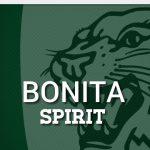 2016 – 2017 Spirit Squad Chosen