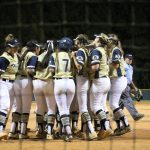 Softball – Watch Online