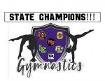 CONGRATULATIONS…. Jackson Area Gymnastics – STATE CHAMPIONS