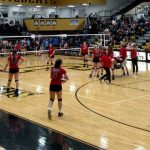 Volleyball season concludes in final four