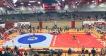 Wrestlers advance three to semistate