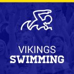 Vikings Cap Season at State Swim Meet