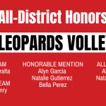 All-District Volleyball Honors