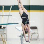 Swim / Dive 11-25-17